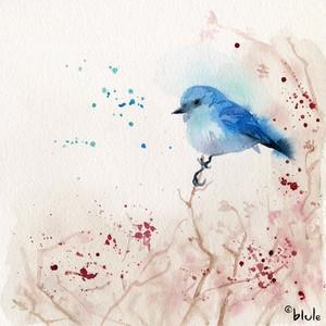 Small 0076 blule bird 2000px