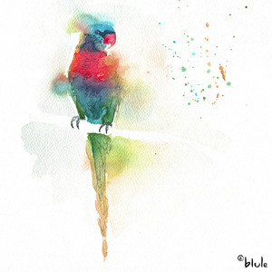 Small 0109 rainbow parrot 2000px