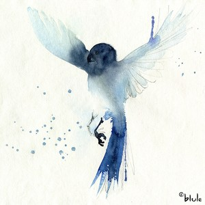 Small 0160 l oiseau bleu 2000px