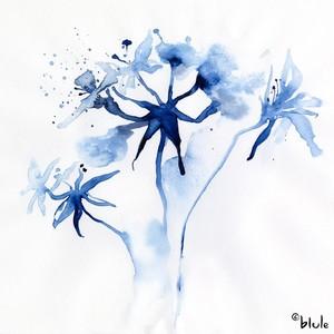 Small 0161 fleur bleue 2000px
