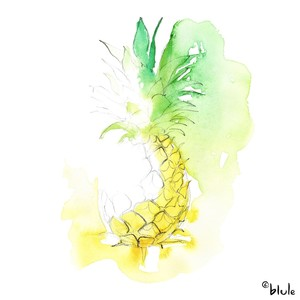 Small 0306 cool ananas 2000px