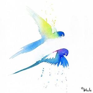 Small 0411 lovebird 2000px