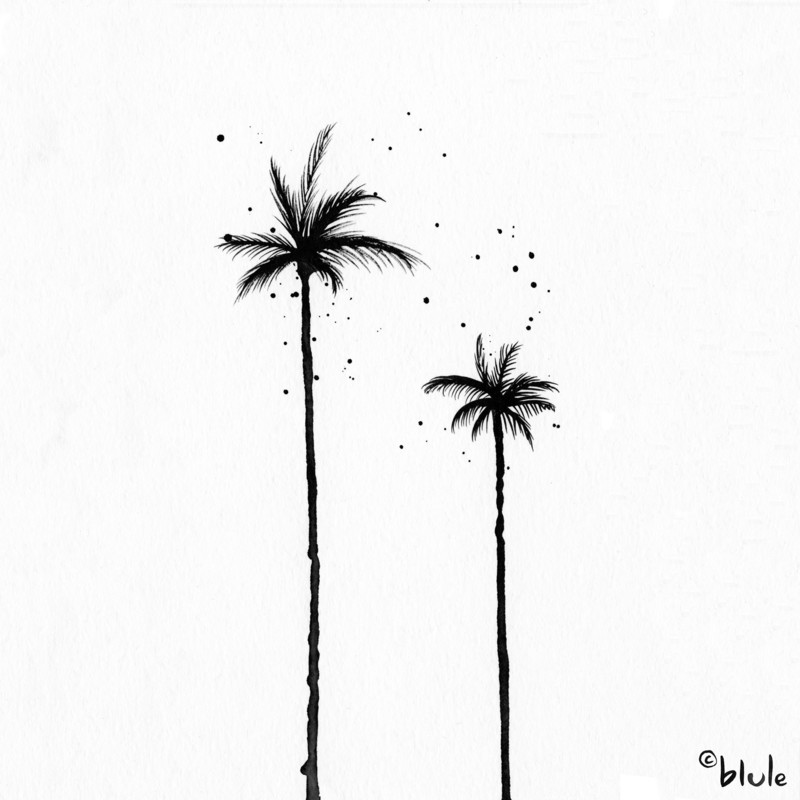 Large 0571 how to grow palm trees 2000px
