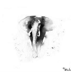 Small 0581 elephants 2000px