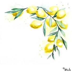Small 0778 lemonade 03 2000px