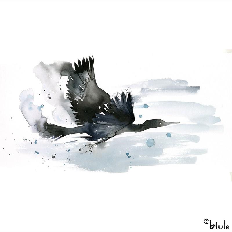 Large 0966 seabird 2000px