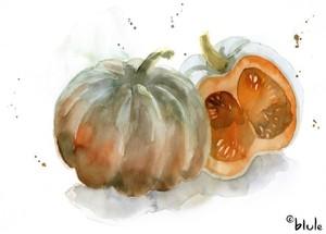 Small 1041 pumpkins 800px