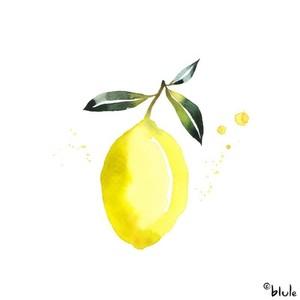 Small 1218 un zest de citron 800px