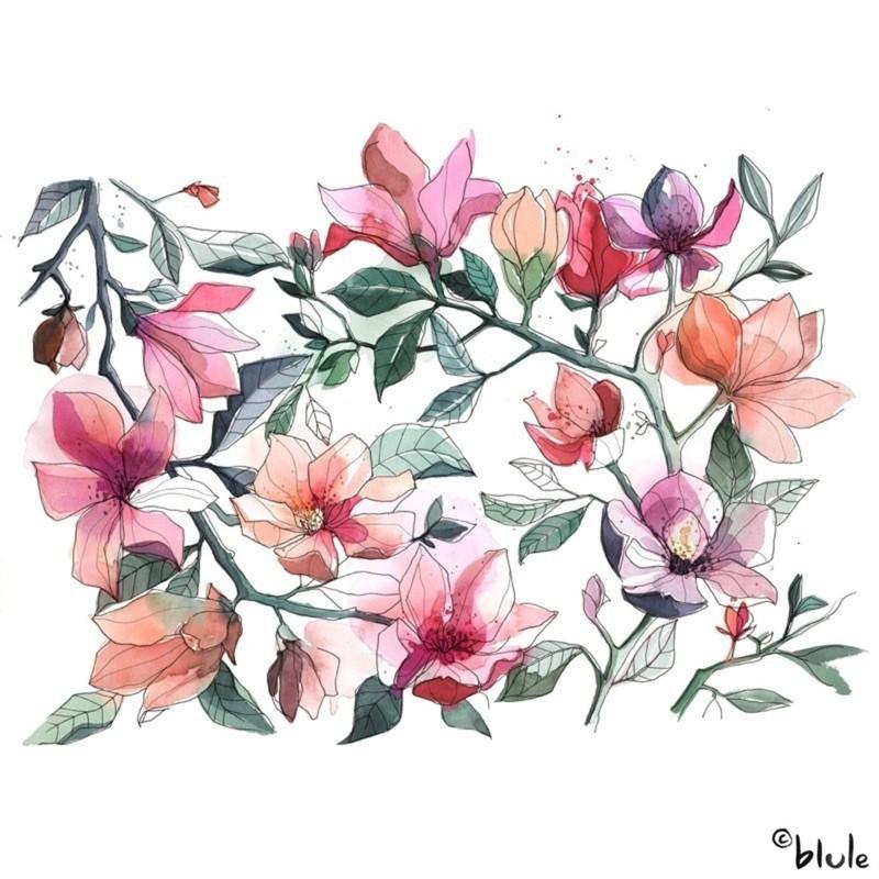 Large 1219 magnolias 800px