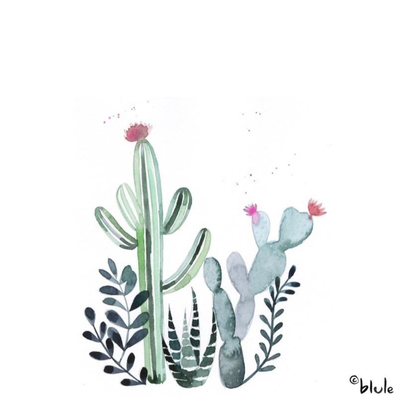 Large 1216 cactus 800px